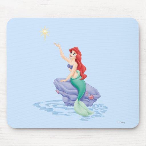 Ariel que se sienta en roca tapetes de raton