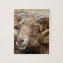 Aries Animal Nature Jigsaw Puzzle