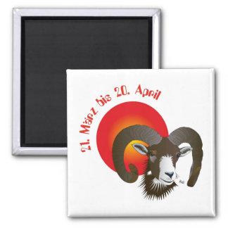 Aries asterisk magnet
