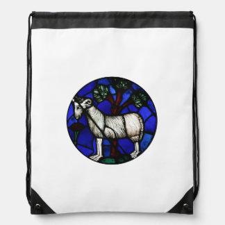 Aries Stained Glass Windows Notre-Dame - Backpack