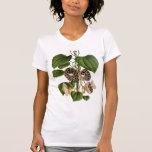 Aristolochia duchartrei t-shirt