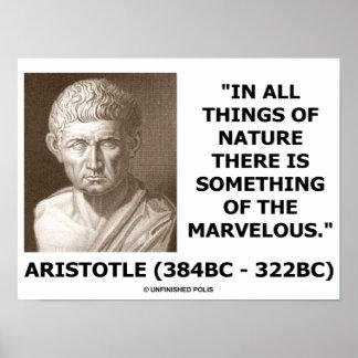 Aristóteles en toda la naturaleza algo de maravill poster