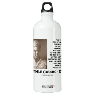 Aristotle Any One Can Get Angry Right Person Time Aluminum Water Bottle