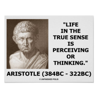 Aristotle Life In True Sense Perceiving Thinking Poster
