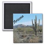 Arizona Apache Trail Cactus Photo Magnet