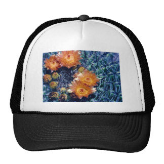 Arizona barrel cactus orange flower mesh hats