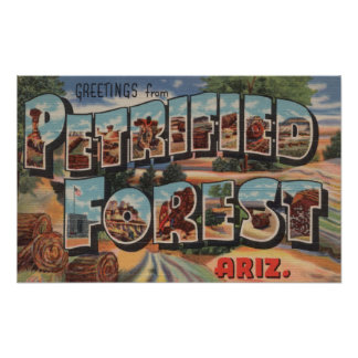 Arizona - bosque aterrorizado - letra grande póster