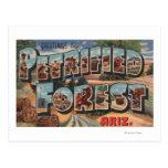 Arizona - bosque aterrorizado - letra grande tarjetas postales