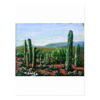 Arizona Cacti Postcard