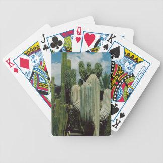 Arizona Cactus Bicycle Playing Cards