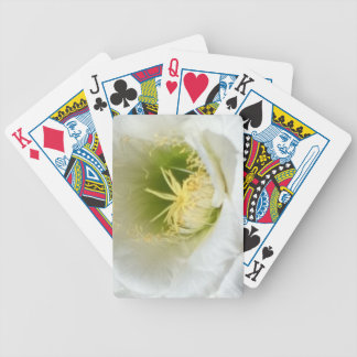 Arizona Cactus Bloom by Ann Finster Bicycle Playing Cards