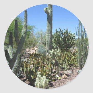 Arizona Cactus Garden Classic Round Sticker