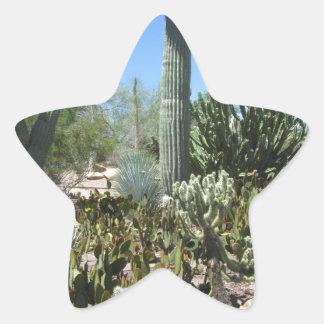 Arizona Cactus Garden Star Sticker