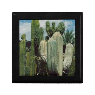 Arizona Cactus Keepsake Box