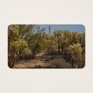 Arizona Cactus La Cholla Business Cards