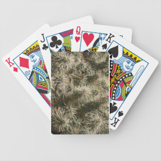 Arizona Cactus on the Trail by Ann Finster Bicycle Playing Cards
