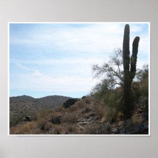 Arizona Cactus Poster