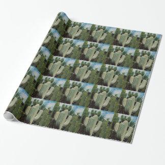 Arizona Cactus Gift Wrap