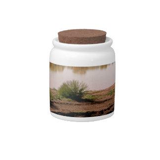 Arizona Countryside Candy Jars