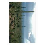 Arizona Desert and Cactuses Stationery