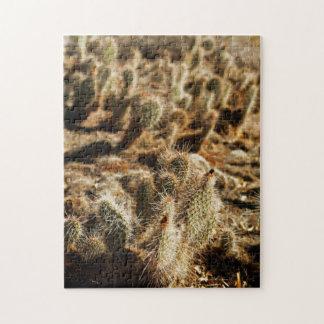 Arizona Desert Cactus / Cacti Photo Puzzle