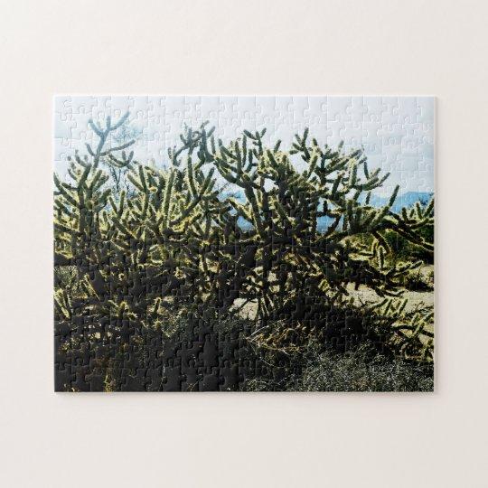Arizona Desert Cactus Photo Puzzle