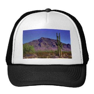 Arizona Desert Mesh Hats