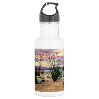Arizona Desert Ocotillos in Bloom Stainless Steel Water Bottle