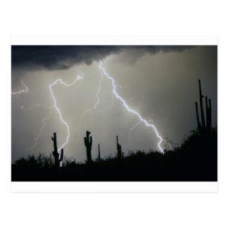 Arizona Desert Storm Postcard