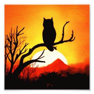 Arizona Desert Sunset with Owl Digital Art Photo Print