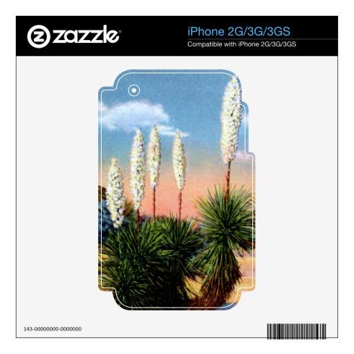 Arizona Desert Yucca Plant iPhone 3G Decals