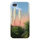 Arizona Desert Yucca Plant iPhone 4/4S Case