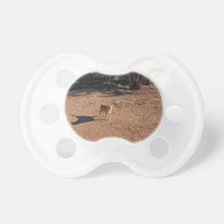 Arizona Dog BooginHead Pacifier