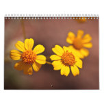 Arizona Flowers Calendar