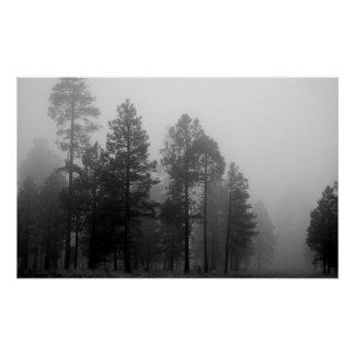 Arizona Fog Poster