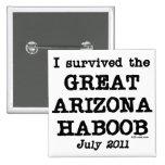 Arizona Haboob Pin