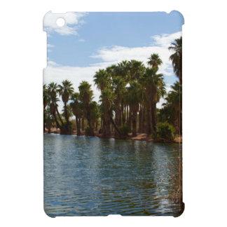 Arizona Lake iPad Mini Cases