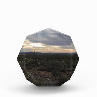 Arizona Landscape Acrylic Award