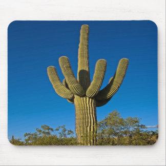 Arizona Nature Mousepad 3997