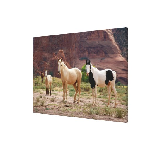 Arizona, Navajo Indian Reservation, Chinle, Gallery Wrap Canvas