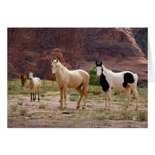 Arizona, Navajo Indian Reservation, Chinle, Greeting Card