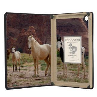 Arizona, Navajo Indian Reservation, Chinle, iPad Mini Cases