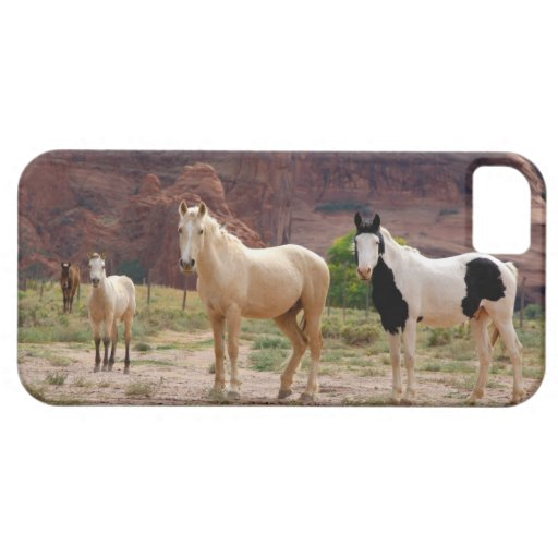 Arizona, Navajo Indian Reservation, Chinle, iPhone 5 Case