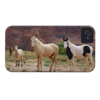Arizona, Navajo Indian Reservation, Chinle, iPhone 4 Case-Mate Case