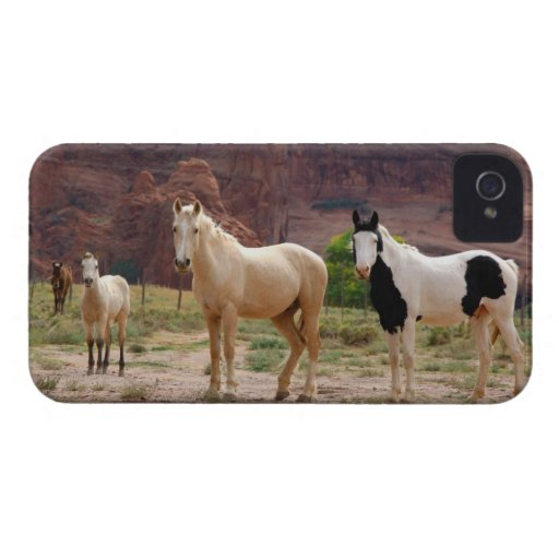 Arizona, Navajo Indian Reservation, Chinle, Blackberry Bold Cover
