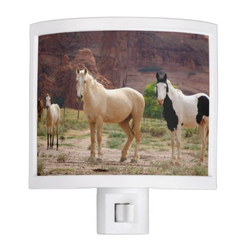 Arizona, Navajo Indian Reservation, Chinle, Nite Light