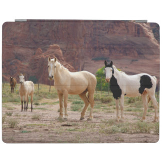 Arizona, Navajo Indian Reservation, Chinle, iPad Cover