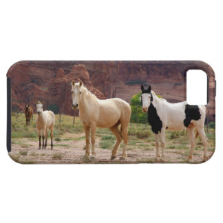 Arizona, Navajo Indian Reservation, Chinle, iPhone SE/5/5s Case