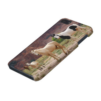 Arizona, Navajo Indian Reservation, Chinle, iPod Touch (5th Generation) Covers