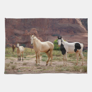Arizona, Navajo Indian Reservation, Chinle, Kitchen Towel